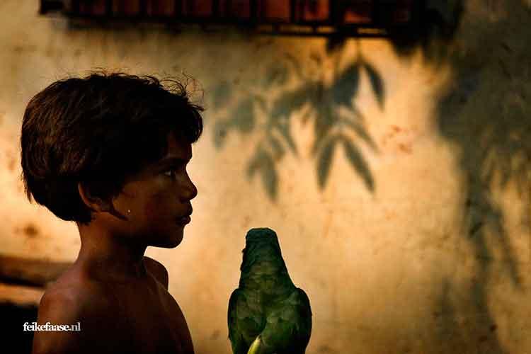 Reisfotografie, silhouette van kind met papegaai - foto door fotograaf Feike Faase